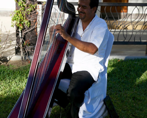 harp player welcomes wedding guests.