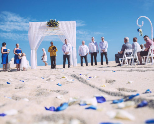 flower petals on beach at Cabo wedding