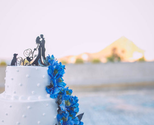 wedding cake with blue flowers and Cabo in background