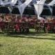 Garden venue in Puerto Vallarta